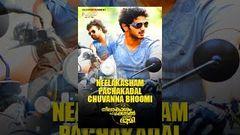 Neelakasham Pachakadal Chuvanna Bhoomi Malayalam Full Movie HD