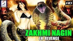 Zakhmi Nagin - Ek Revenge - Dubbed Hindi Movies 2018 Full Movie HD l Rajendra Babu Payal