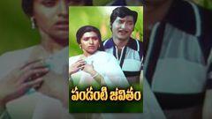 Pandanti Jeevitham Telugu Full Movie