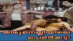 Malayalam Hot Full Movie THIRUNELLIYILE PENKUTTY | Full HD Movie