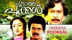 Choodatha Pookkal Full Malayalam Movie | Ratheesh | Sukumaran | Lakshmi | Zarina | Online Movies