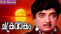 Malayalam Full Movie | Chakravakam | Superhit Movie | Ft Prem Nazir Adoor Bhasi