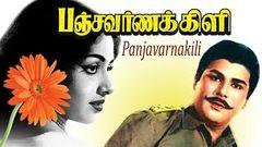 Panchavarana Killi old tamil full movie