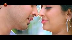 Nagarjuna Romantic And Action Telugu Full HD Movie | Nagarjuna | Richa Gangopadhyay | T M