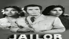 Jailor | Full Hindi Movie | Bollywood Movie