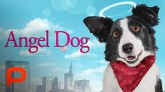 Cool Dog Full Movie