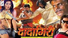Badlapur Dobaara (2016) Telugu Film Dubbed Into Hindi Full Movie | Gopichand Trisha Krishnan