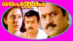 Paithrukam (1993) Full Malayalam Movie | Malayalam Full Movie 2016 | Suresh Gopi Jayaram