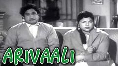 Arivaali