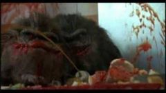 Critters 2 English Full Movie