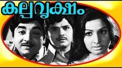 Kalpa Vriksham   Old Malayalam Super Hit Movie   Full Movie HD   Prem Nazir
