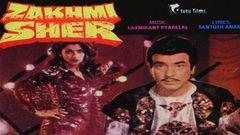 Zakhmi Naagin 2004 I Full Length Hindi Movie I Hot B Grade Movie