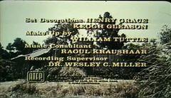 The Fighter Man Ghayal- Jr NTR Sameera Reddy - Hindi Movie Part 8