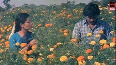Kannale Ennai Kollathadi 2014 Tamil Movie | Tamil Movies 2014 Full Movie HD
