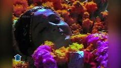 Ice Cream Penne - Shakeela& 039;s Full Hot Tamil movie HD