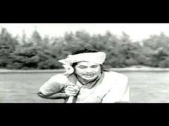 Rudramadevi Allu Arjun& 039;s Varudu Full Length Telugu Movie DVD Rip Allu Arjun