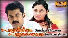 Sundari Neeyum Sundaran Njanum 1995 Full Malayalam Movie