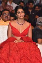 Pooja Hegde at Maharshi Vijayotsavam Function