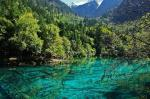 The Alpine Lakes And Waterfalls of Jiuzhaigou