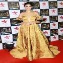 Ileana DCruz at Star Screen Awards 2017